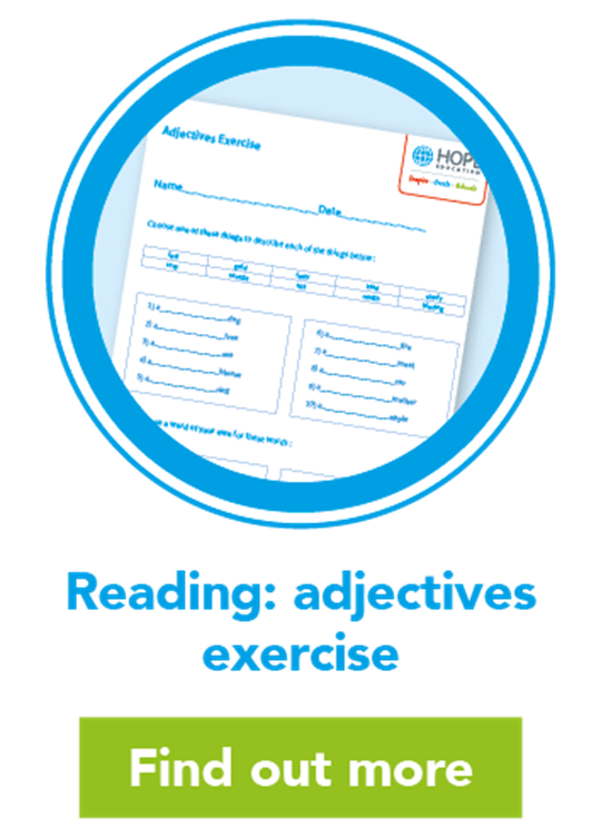 Reading: adjectives exercise